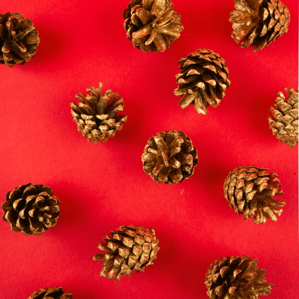 **NEW** Christmas Coloured Pine Cone Decorations - Gold
