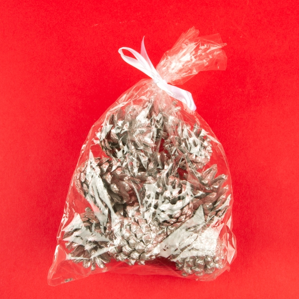 **NEW** Christmas Coloured Pine Cone Decorations - Silver