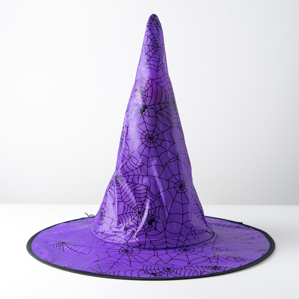 purple halloween party witches hat